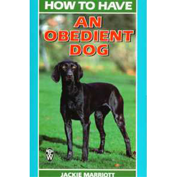 How To Have An Obedient Dog